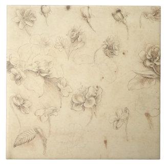 草そっくりの植物(Briza Mの花の勉強 タイル