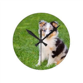 草に坐っている1匹の若いシェットランド・シープドッグ犬 ラウンド壁時計
