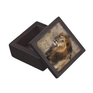 草のアフリカのライオン ギフトボックス