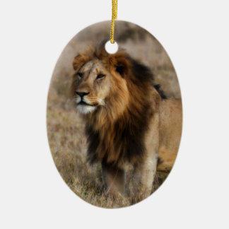 草のアフリカのライオン セラミックオーナメント