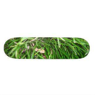 草のスケートボード 18.1CM オールドスクールスケートボードデッキ