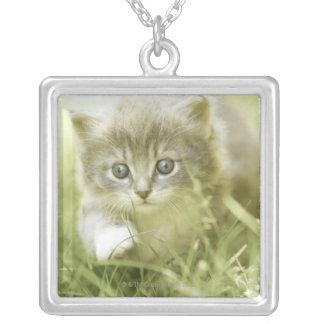 草のステップを踏んでいる子ネコ シルバープレートネックレス
