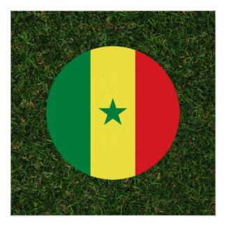 草のセネガルの旗 ポスター