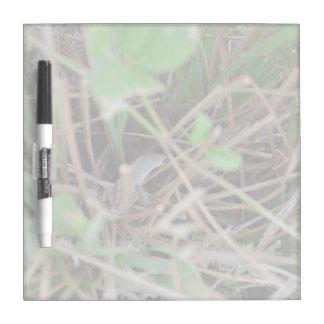 草のハ虫類動物のトカゲのかくれんぼ ホワイトボード