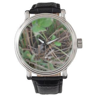 草のハ虫類動物のトカゲのかくれんぼ 腕時計