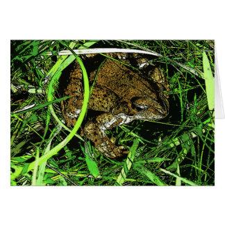 草のヒキガエル カード