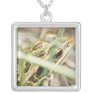 草のヒョウカエル シルバープレートネックレス