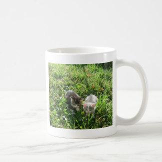 草の子ネコ コーヒーマグカップ