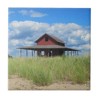 草の島のタイル 正方形タイル小