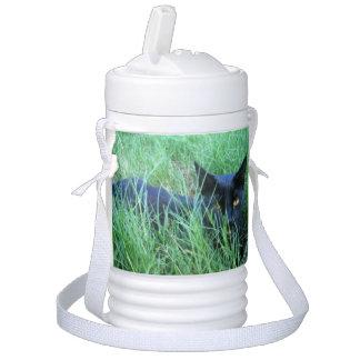 草の猫 ドリンククーラー