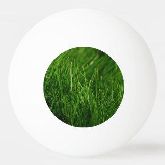 草の球 卓球ボール