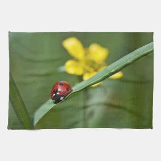 草の終わりのてんとう虫 キッチンタオル