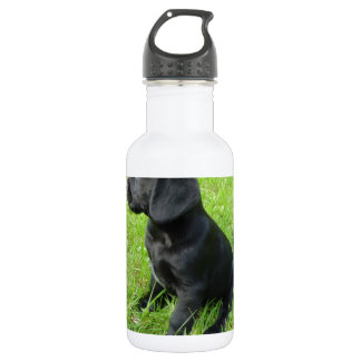草の黒いラブラドル・レトリーバー犬 ウォーターボトル
