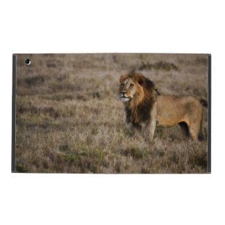 草のPowisのiPadの場合のアフリカのライオン iPad ケース