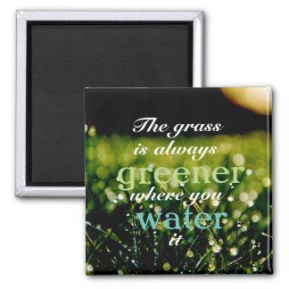 草はそれに水をまくところに緑常にです マグネット