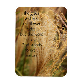 草は聖なる書物、経典の磁石枯らしましたりまたはパンパスグラスの マグネット