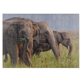 草を表示しているインドのアジアゾウ カッティングボード