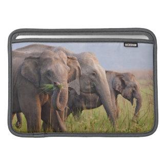 草を表示しているインドのアジアゾウ MacBook スリーブ
