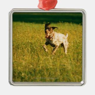 草を通る犬のランニング メタルオーナメント