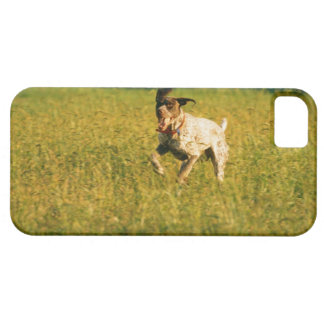 草を通る犬のランニング iPhone SE/5/5s ケース