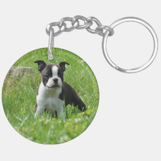 草原のアクリルKeychainのボストンテリアの子犬 キーホルダー