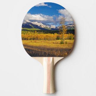 草原の上の青の空そして雲 卓球ラケット