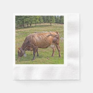 草原の牛食べ物 縁ありカクテルナプキン