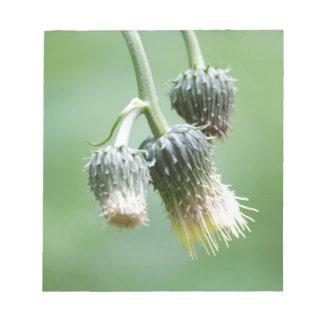 草原の野生の花 ノートパッド