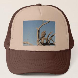 草原の《鳥》ハヤブサ キャップ