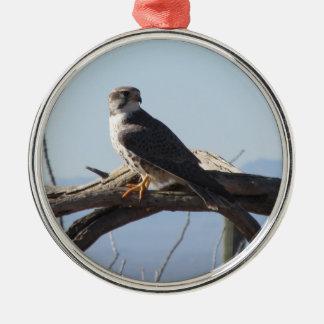 草原の《鳥》ハヤブサ メタルオーナメント