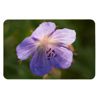 草原のCranesbillの花 マグネット