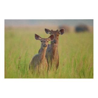 草原のSambarのシカ、Corbettの国立公園 ウッドウォールアート