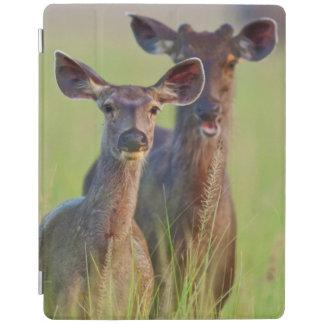 草原のSambarのシカ、Corbettの国立公園 iPadスマートカバー