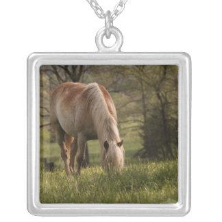 草原、Cadesの入江、素晴らしい3で牧草を食べている馬 シルバープレートネックレス