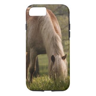 草原、Cadesの入江、素晴らしい3で牧草を食べている馬 iPhone 8/7ケース