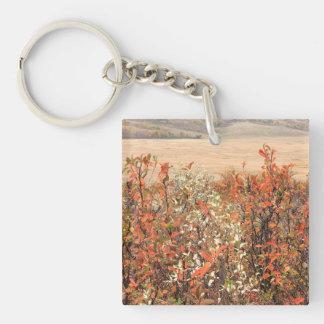 草原Buckbrush キーホルダー
