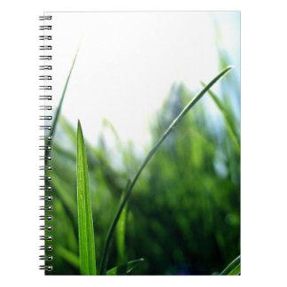 草及び青空 ノートブック