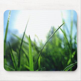 草及び青空 マウスパッド