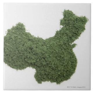 草2から成っている中国大陸の地図 タイル