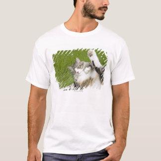 草、クローズアップにあっている猫 Tシャツ