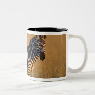 草、マサイ語の平野のシマウマのEquusのクアッガ) ツートーンマグカップ