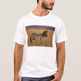 草、マサイ語の平野のシマウマのEquusのクアッガ) Tシャツ