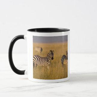 草、マサイ語マラの平野のシマウマ(Equusのクアッガ) マグカップ