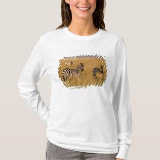 草、マサイ語マラの平野のシマウマ(Equusのクアッガ) Tシャツ