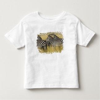 草、マサイ語マラ2の平野のシマウマ(Equusのクアッガ) トドラーTシャツ