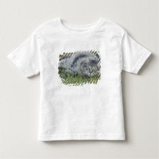 草、中央フロリダで置いているメインのあらいぐま トドラーTシャツ