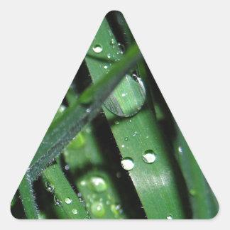 草-早朝の露の雨滴 三角形シール