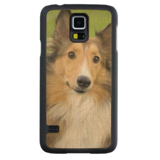 荒いコリー、犬、動物 CarvedメープルGalaxy S5スリムケース
