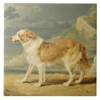 荒上塗を施してあるコリー1809年(油船上に) タイル