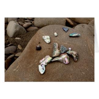 荒磯の挨拶状のアワビの貝 カード